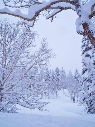 初旭岳はホワイトアウト