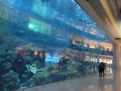 ドバイ水族館