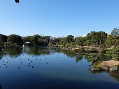 2016年2月 清澄庭園(都立文化財9庭園⑥)、旧岩崎邸庭園(都立文化財9庭園⑦)を散策