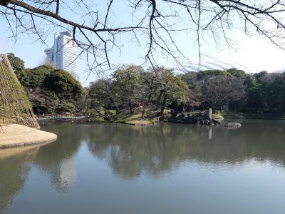 2016年2月 小石川後楽園(都立文化財9庭園⑨)を散策