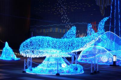 海遊館25周年 海遊館史上最大級 120 万球以上の壮大な イルミネーション!