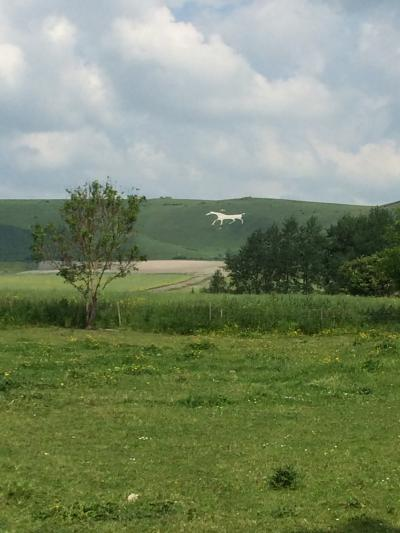 イギリス:UK2014-Wiltshire(ウィルトシャー州)~ドイツでの結婚式からハネムーンイギリスへ⑨ セントマイケルズレイラインの旅-4 ヒルフィギュア(ホワイトホースの地上絵)~