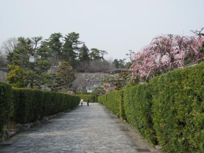 伊勢・松阪 城下町武家屋敷と商人屋敷の町並みをぶらぶら歩き旅