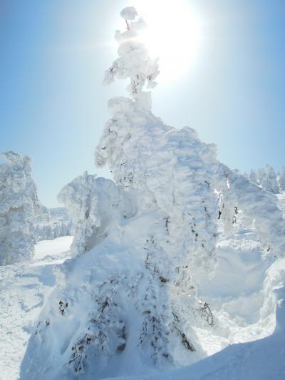 山形旅行2(樹氷-米沢上杉家ゆかりの地-かまくら村,他)