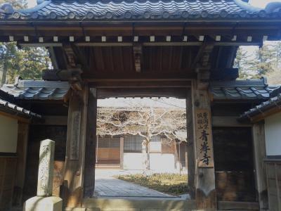 近隣シリーズ② 米原の名勝庭園