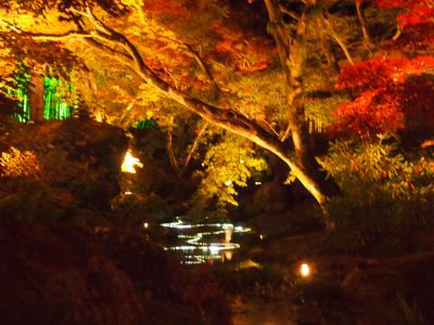 秋の京都2013 一人旅その2 天龍寺、渡月橋、常寂光寺、宝厳院
