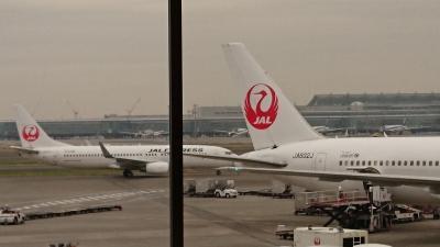 JALで羽田から東広島へ