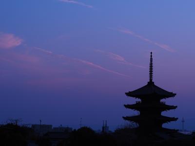 冬の京都で侘びを感じる一人旅 (5日目:宇治・伏見をうろうろ)
