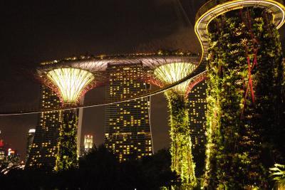 まるで映画のアバターの世界に迷い込んだような、シンガポールのスーパーツリーグローブ