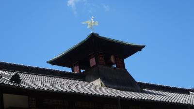 初めまして四国!道後温泉と松山市は本当にいいところです 05