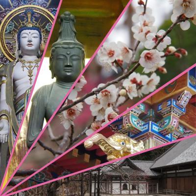 まもなく・・・瑞巌寺本堂の大修理が終わり、参拝再開です!