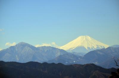 高尾山健康登山(7) 1号路ー高尾山ーいろはの森-木下沢梅林ー高尾駅