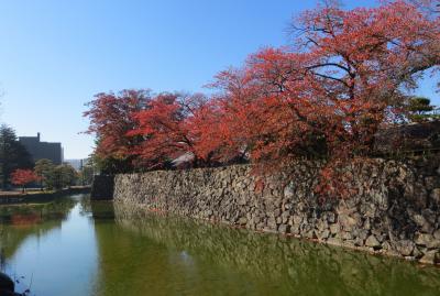 2015秋、紅葉の時期の松本城(3/3):11月5日(3):