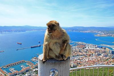 リフレッシュ休暇 ヨーロッパ6カ国16日間のクルーズ旅行(その2 世界の要衝ジブラルダル)