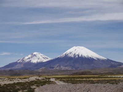 チリ旅行ー6:アリカ