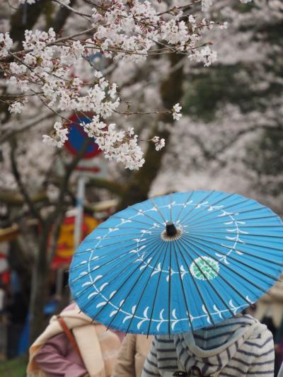 あまてつで行こう!!筑後の小京都・秋月の桜桜桜桜桜・・・そしてキンギョ!? #1