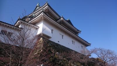 和歌山県和歌山市 和歌山城