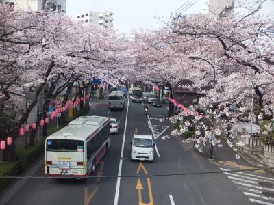 都内の本数僅少路線バスに乗車して早朝参拝②・・・・・前編