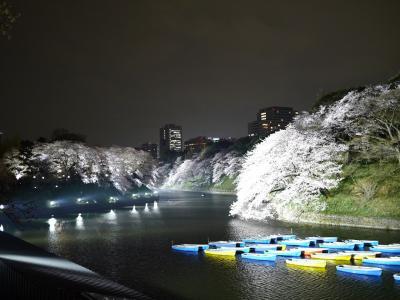 満開の夜桜を見に行く@千鳥ヶ淵