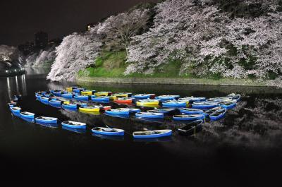 2016年4月2日千鳥ケ淵 夜桜