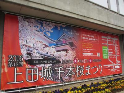 桜三昧の旅 in 上田