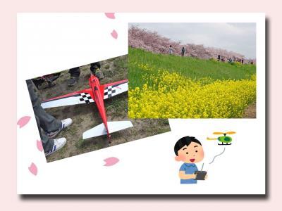 ラジコン・ショー見学&撮影と熊谷さくら堤へ 2016/4/3