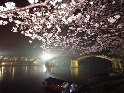 春♡花だより (錦帯橋 細雨の夜桜)