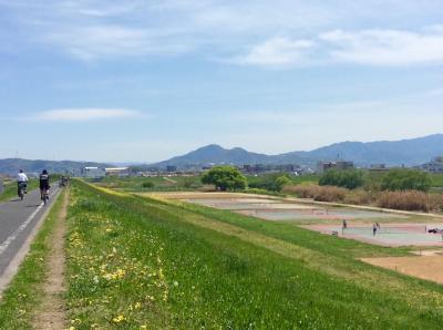 お天気が良い休日はサイクリング♪ 滑り込みセーフで今年の桜に間に合ったよ