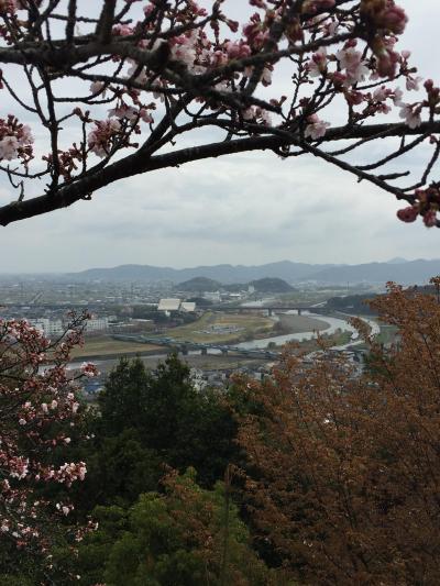 桜!in 播磨の小京都