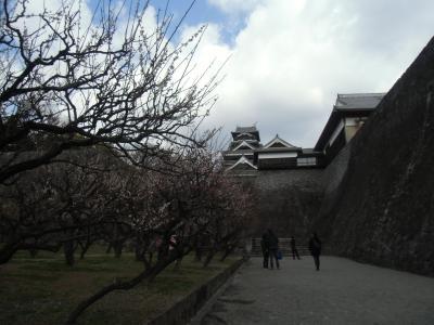 【熊本城 2014】 清正気質