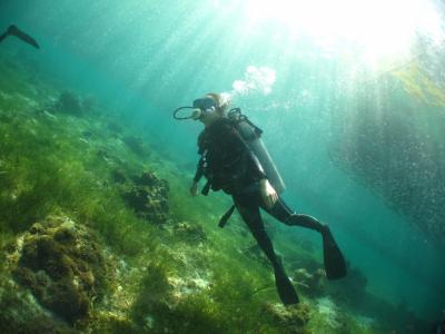 セブ島 ホワイトサンズリゾート&スパ泊 その2 3日目 ダイビングとその他