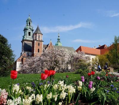 団塊夫婦のポーランド&スロバキアドライブ旅行ー(8)新緑の美しい古都クラクフを歩く