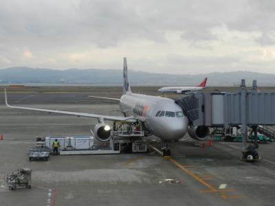 出発~熊本空港~熊本市内で夕食◆2016年1月/熊本・天草の旅≪その1≫