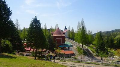 六甲山 新緑眩しい六甲山牧場を訪ねて。