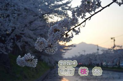 ●2016 弘前城桜まつり●