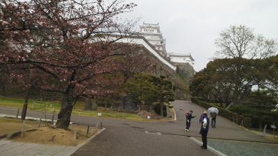彦根から姫路、赤穂盛り沢山旅