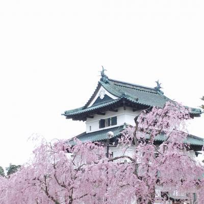 歴史建物探訪@弘前さくらまつり(2)