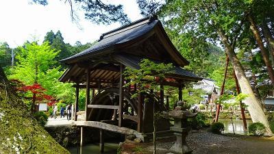白毫寺・・・太鼓橋と九尺フジの寺 下巻。