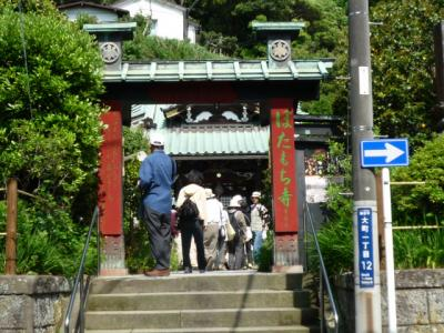 鎌倉・祇園山ハイキング 2009/5/14