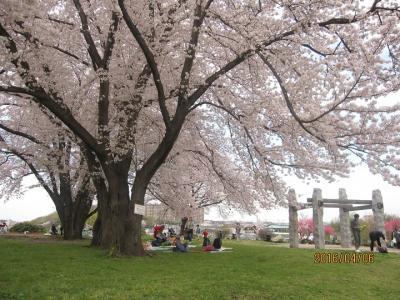 横浜市都筑区水と緑の散策マップ「Aつづき五山と早淵川を歩くコース」をたどる