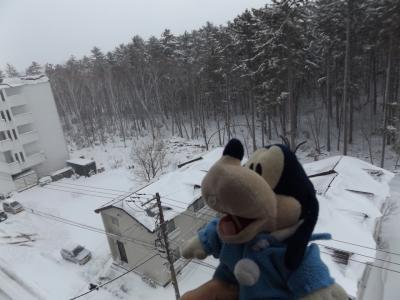 グーちゃん、GWに極寒の道東へ行く!(雪の大鵬相撲記念館、双羽黒もいるよ!編)