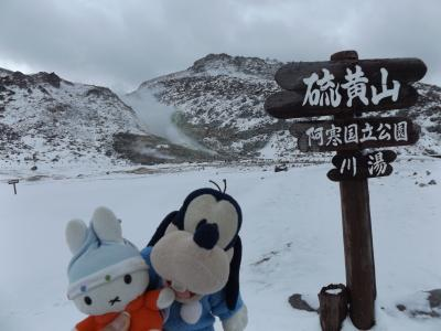 グーちゃん、GWに極寒の道東へ行く!(コニヘー、硫黄山の熱湯風呂に浸かる?編)