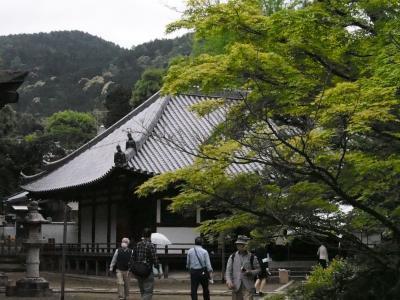京都非公開文化財特別公開、伏見区の六ヶ寺へ