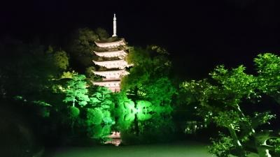 山口☆夜の国宝瑠璃光寺五重塔と母の日のプレゼント