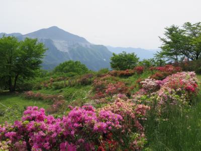 新緑の日向山ハイキング①東飯能~芦ヶ久保~日向山迄