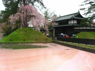 '16 GW青森&北海道周遊1 弘前:夜行バスで弘前へ~雨で桜散り始めの弘前城