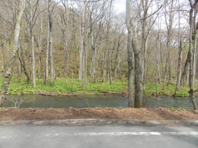 奥入瀬渓谷から五所川原へ