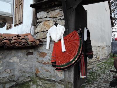 ルーマニア・ブルガリア旅行記12 コプリフシティツア