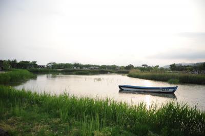 自然生態の宝庫、順天湾国家庭園で世界の庭を歩く