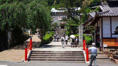 ゴンママの「歩こう会参加」・・・奈良の古都を歩く 上巻。